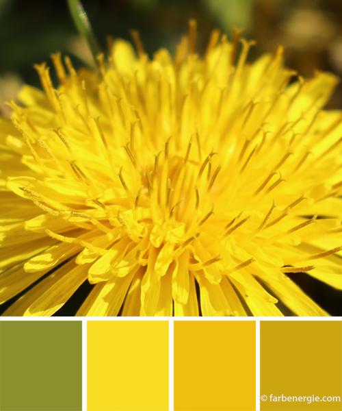 Farbinspirationen-Sonnengelb-Senfgelb-Fruehlingsgruen