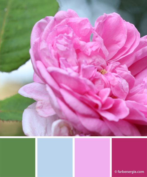 Farbinspirationen-Gruen-Hellblau-Rosa