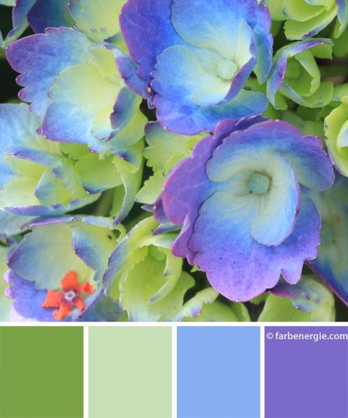 Farbinspirationen-Violett-Bleu-Maigruen-Mint-Mintgruen